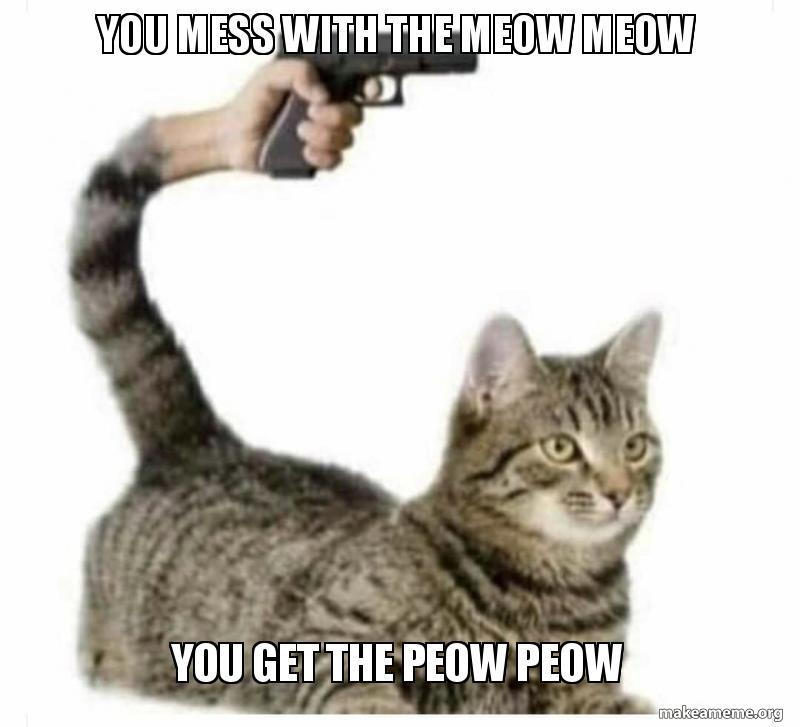 You meowed your last meow - meme