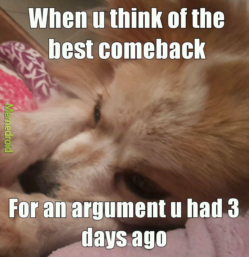 Sad doggo - meme