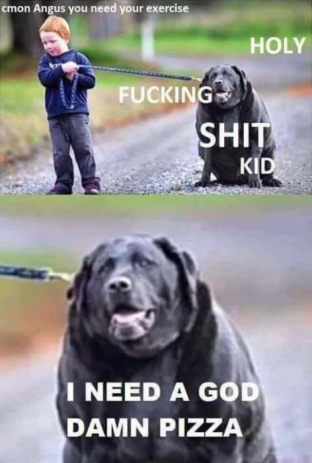 I did not make this. However, I laugh every time i see it regardless of how many times I've seen it so I will share - meme