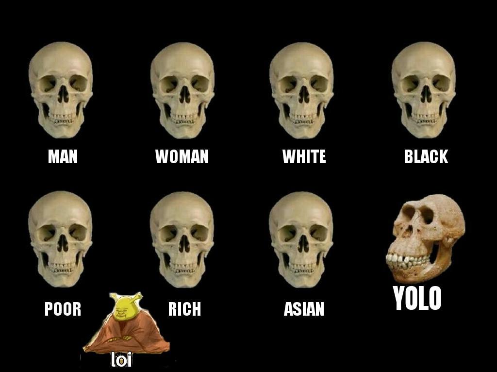Simio culiao - meme