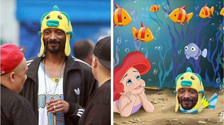Snoop Flounder... - meme