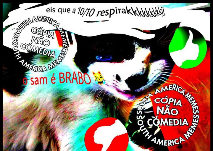 KKKKKKKKK MUTO TOPE - meme