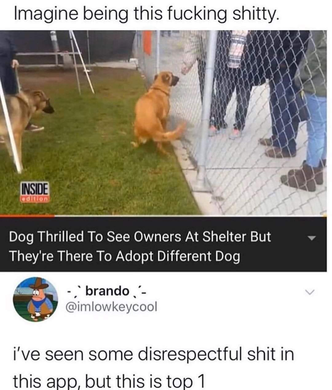 Poor doggo - meme
