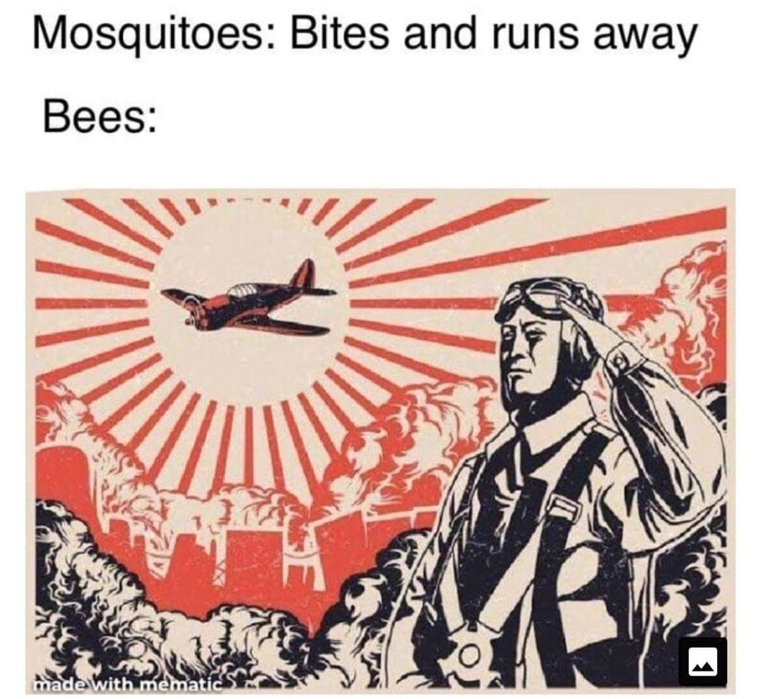 Not the bees!!!!!!!! - meme