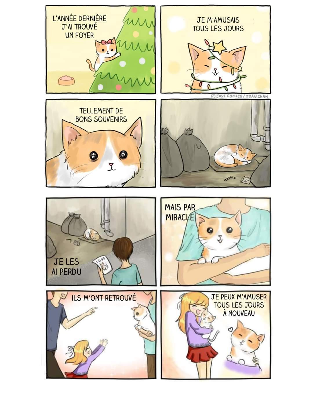 Voilà une histoire. #pray pour les chats - meme