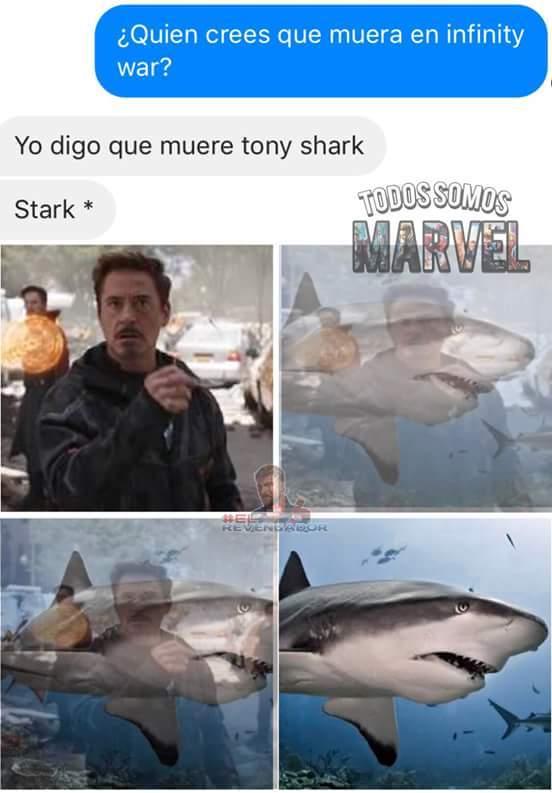 Tony Stank - meme