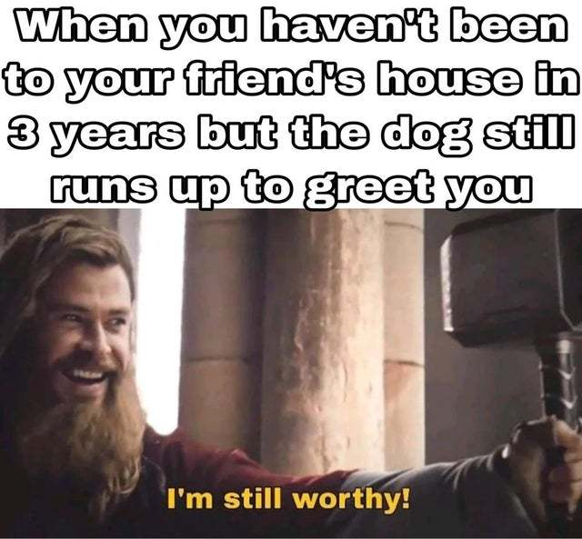 When you have not been to your friend's house in 3 years but the dog still runs up to greet you - meme
