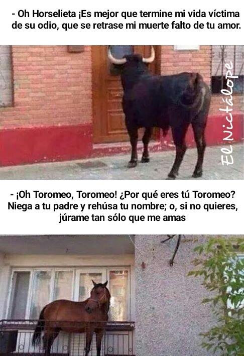 Toromeo y Horselieta - meme