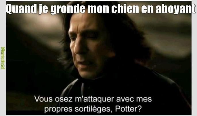 Marathon  harry potter; ma passion - meme