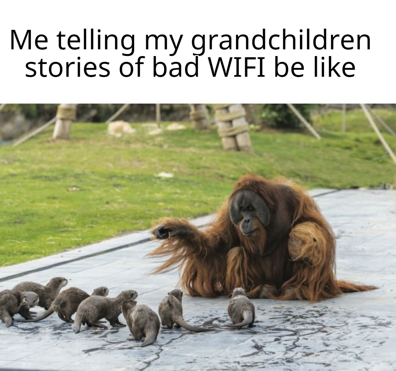 But Grandpa I thought that 3g connection was a myth! - meme