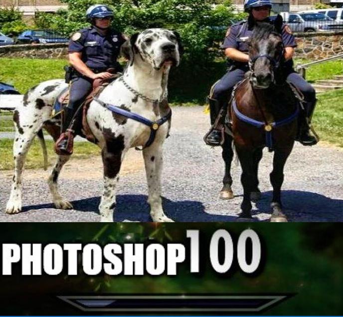 That photoshop thou - meme