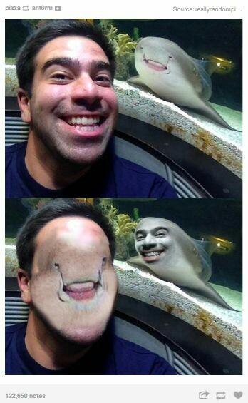 Photoshop 11 - meme