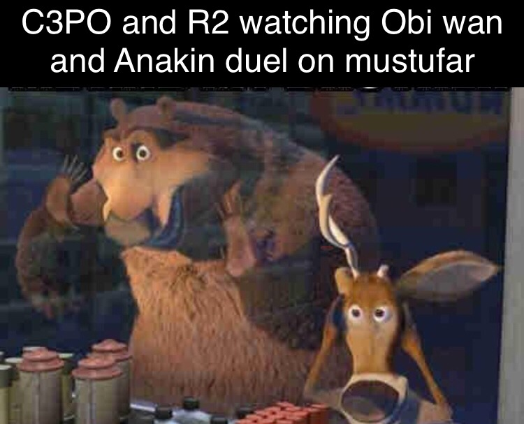 R2 came with Anakin on his ship to mustufar, why didn't he crash the ship and stop all the suffering Vader would have caused? - meme
