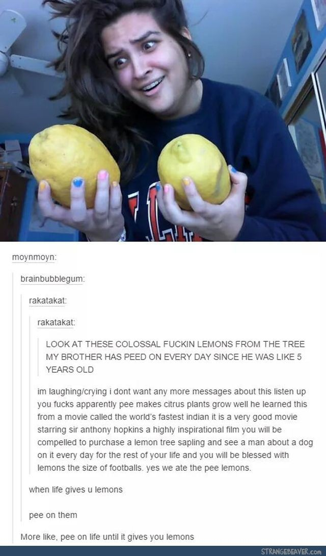 Lemons go by quantity, not weight - meme