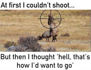 Elk hunting - meme