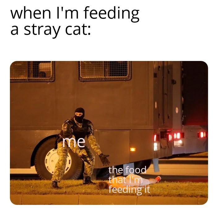 New template - meme