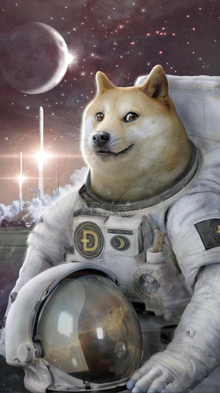 Intergalactic Dogecoin - meme
