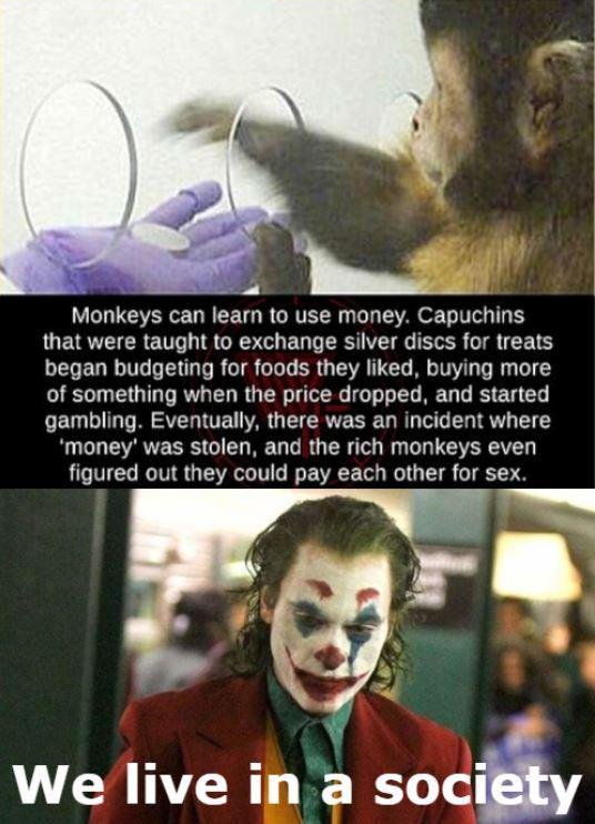 Monkey money - meme