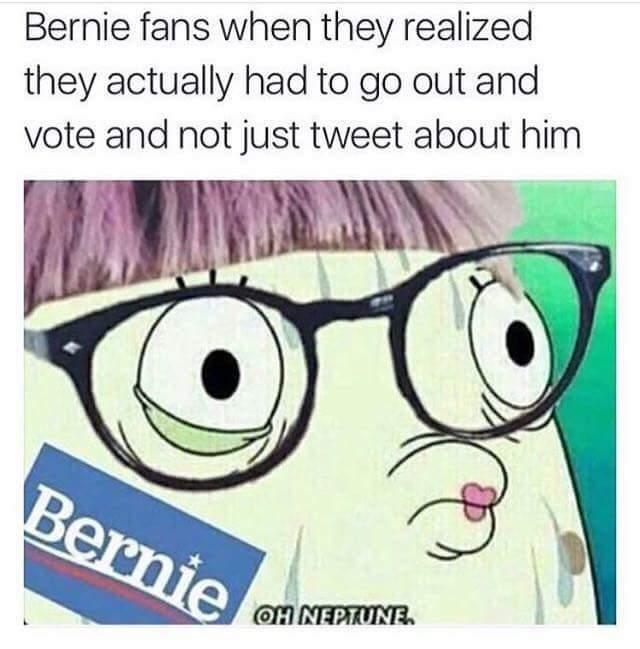 Poor Bernie Babies - meme