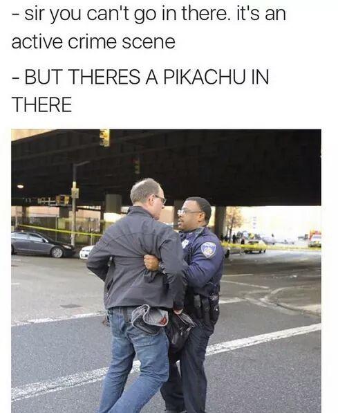 Gotta risk it all to catch them all... - meme