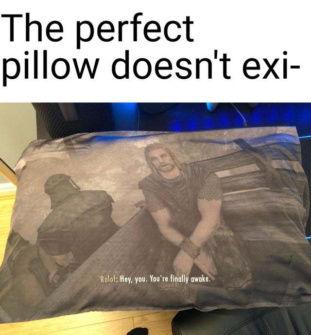 The perfect pillow doesn't exi- - meme