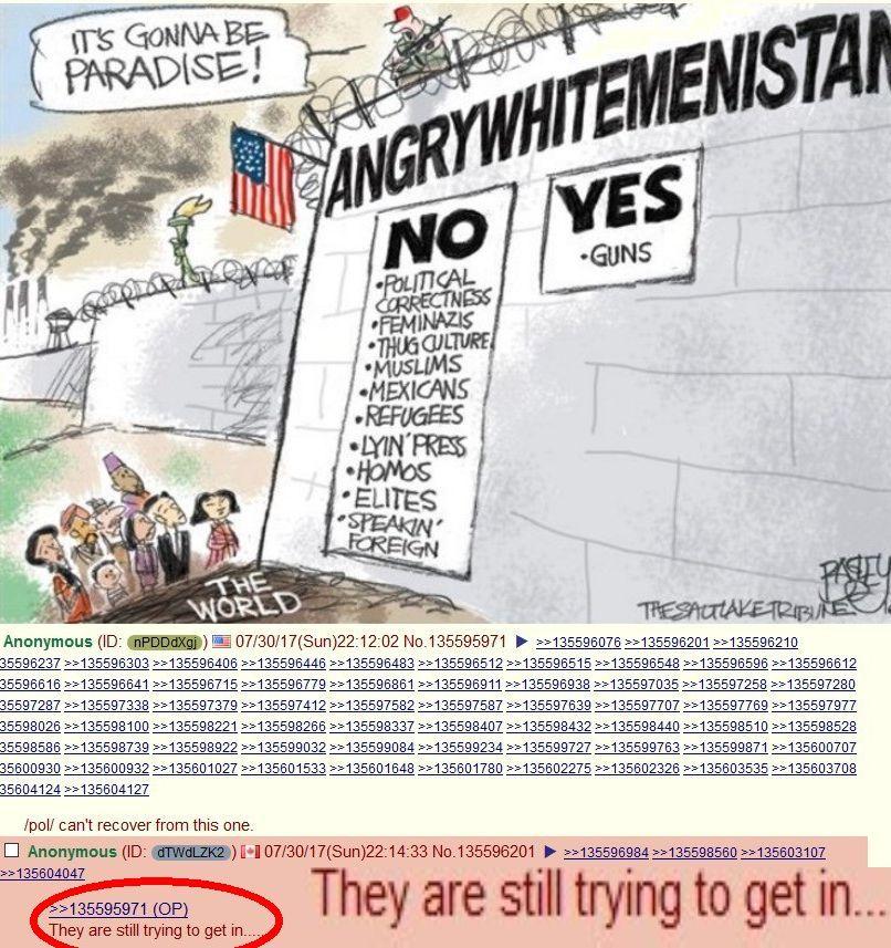 dongs in a border - meme