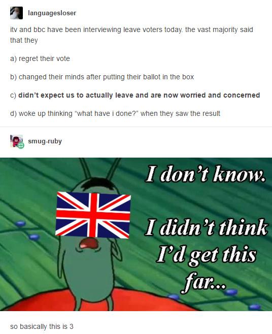 Spengbag is reluvint - meme