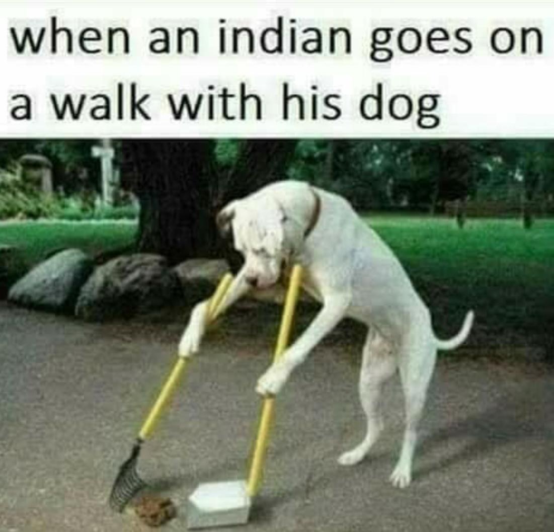 dothead indians - meme