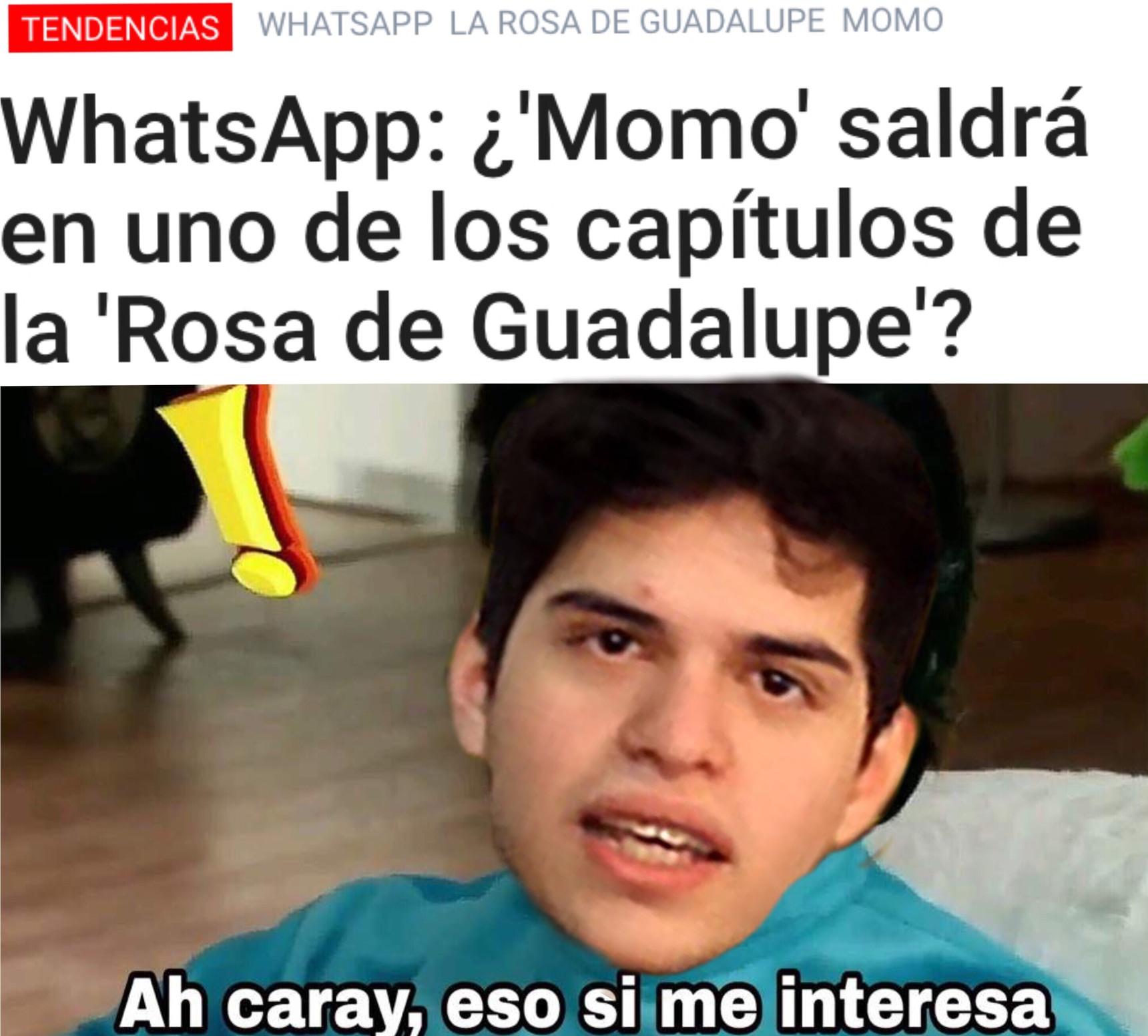 La Rosa De Guadalupe se renueva - meme