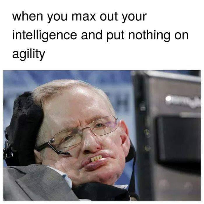 Gotta balance your character - meme