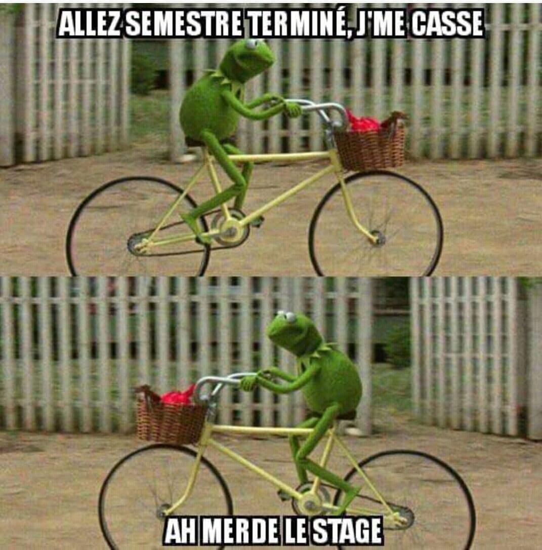 Qui fait un stage où ? - meme