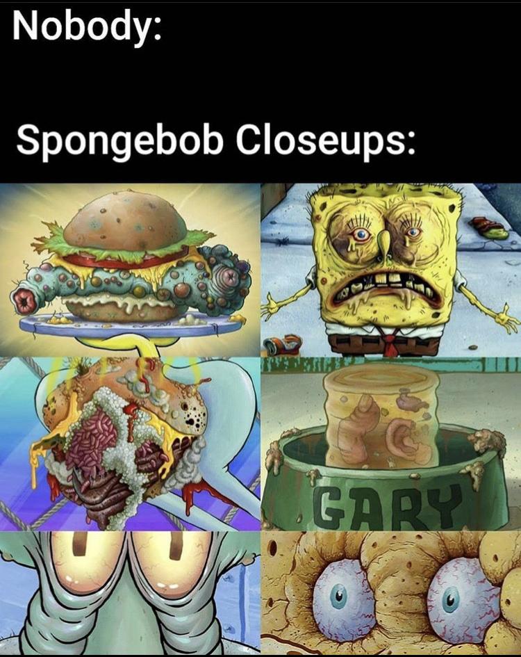Sponge - meme