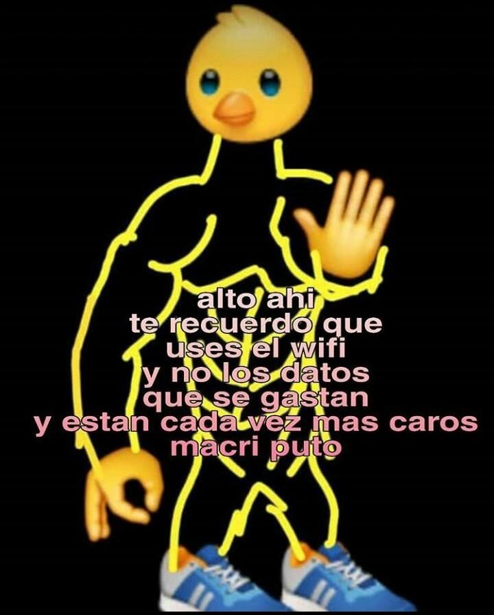 cuack - meme