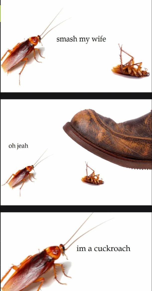 Cuckroach - meme