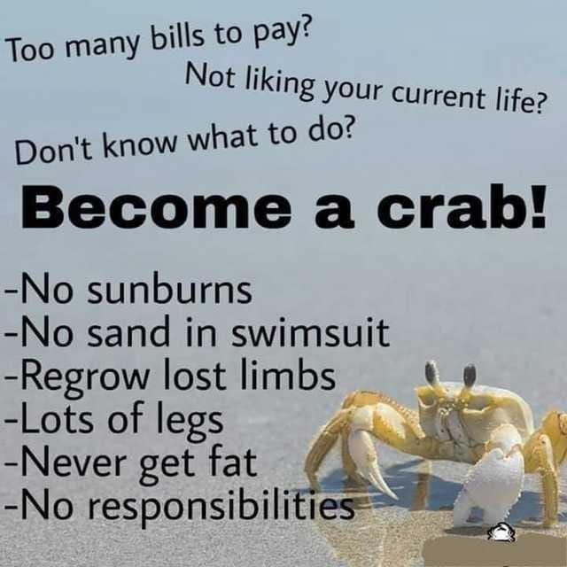 crab - meme