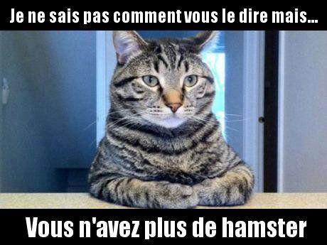AH !! - meme