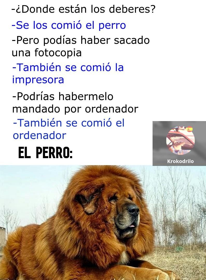 El Perro León - meme