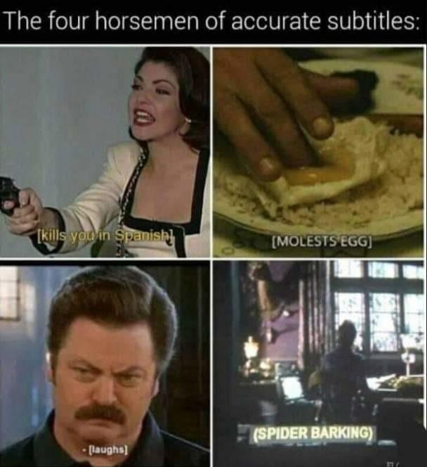 Subtitle.... - meme