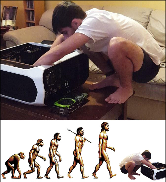 Master Race evolution - meme