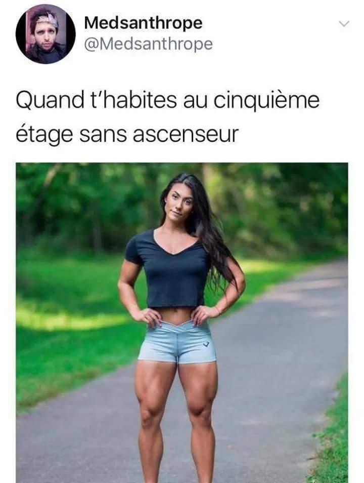 Musclé qu'elle est - meme