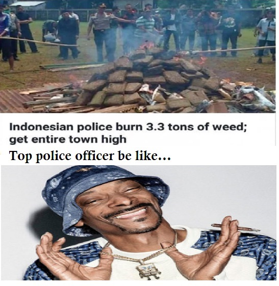 Indonesian police burn 3.3 tons of weed, get entire town high - meme
