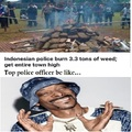 Indonesian police burn 3.3 tons of weed, get entire town high