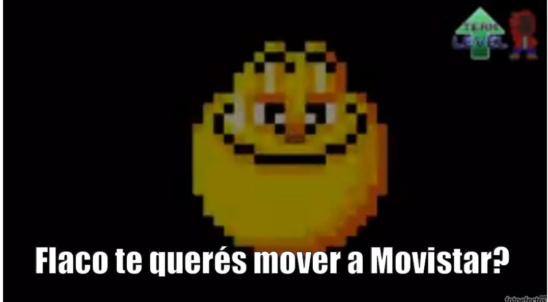 Flaco - meme