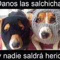 Ayuda ay perros ladrones que se quieren llevar mi salchicha