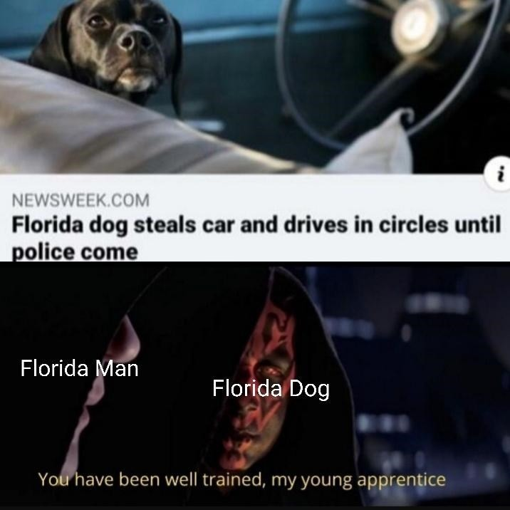 What would a Florida family look like? - meme