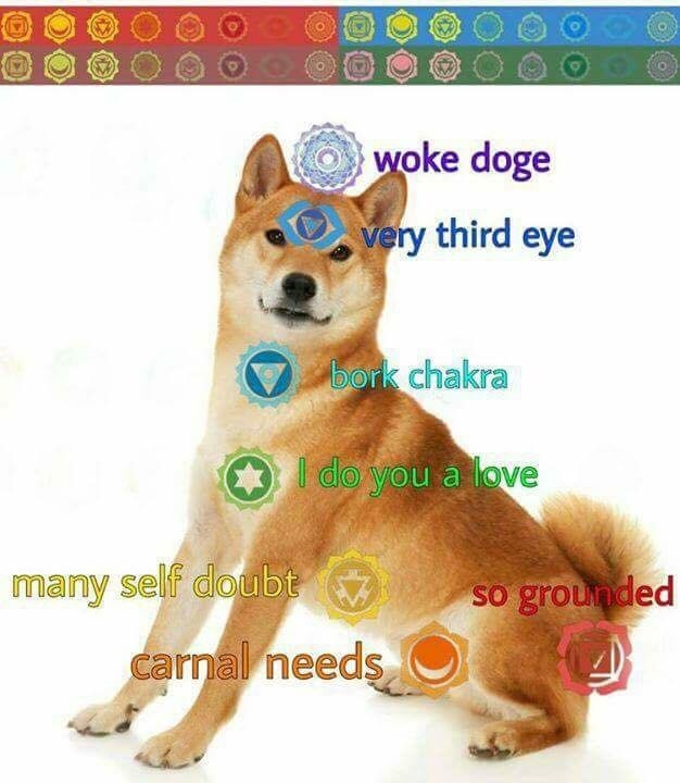 meditate to align ur borks - meme
