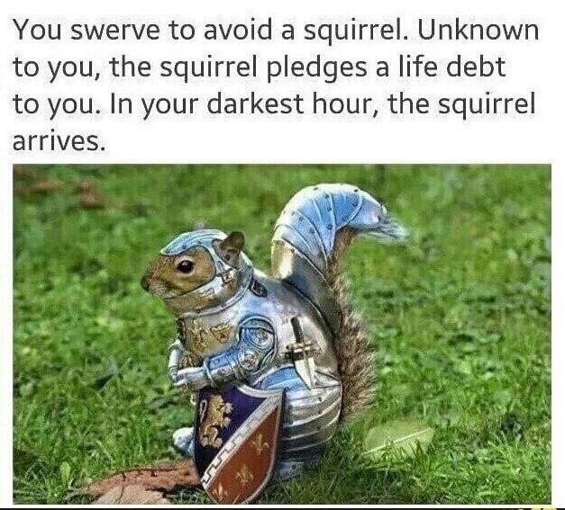squirrel knights of the nut table - meme