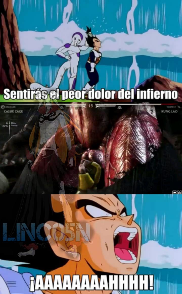 Pobre Vegeta - meme