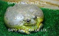 SAPO JUGADOR DE LOL - meme