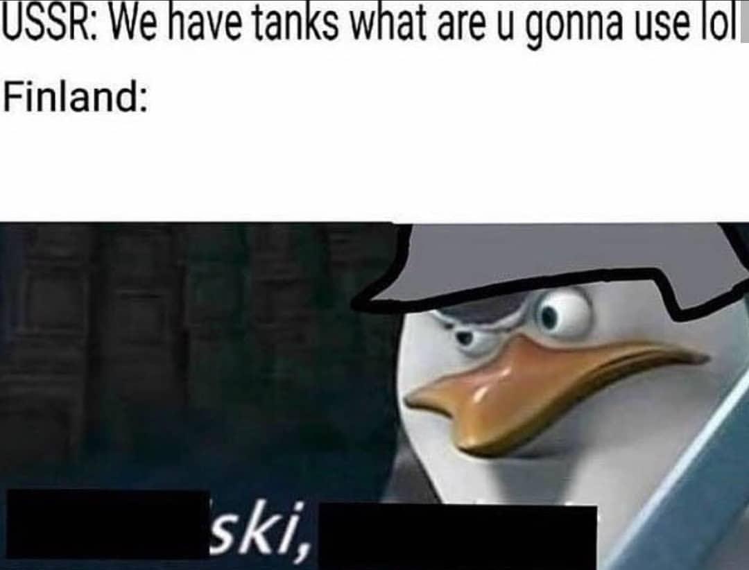 Ski - meme